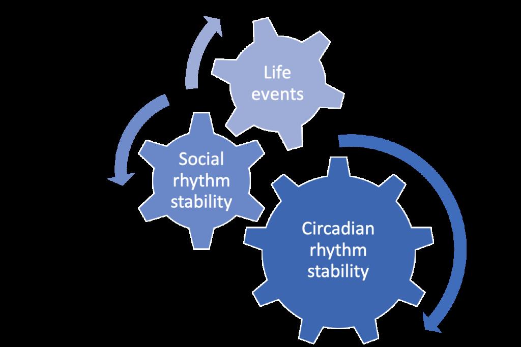 picture1-1024x683 Summary of Peer-Reviewed Research on Social Rhythm Circadian Rhythm My Moai Social Rhythm
