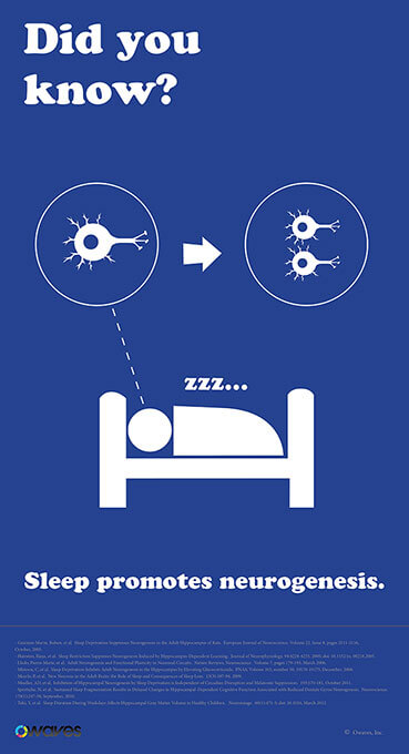 sleep.10_compressed Infographics